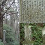 伊勢神峠の巨木と石仏